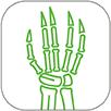 Rheumatology Icon